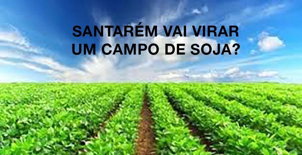 Desertificação da Amazônia, pesticização da água e o Plano Diretor de Santarém