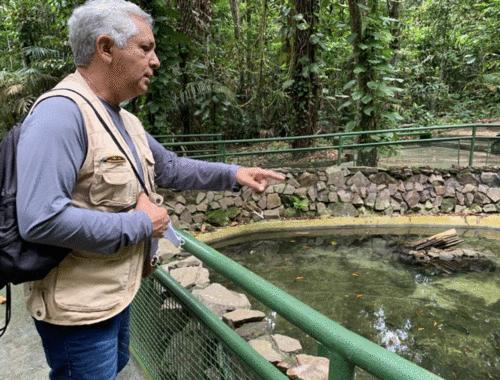 Manejo e Conservação da Amazônia - Defesa de Memorial