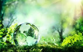 Conhecimento Ecológico Tradicional em aula/debate